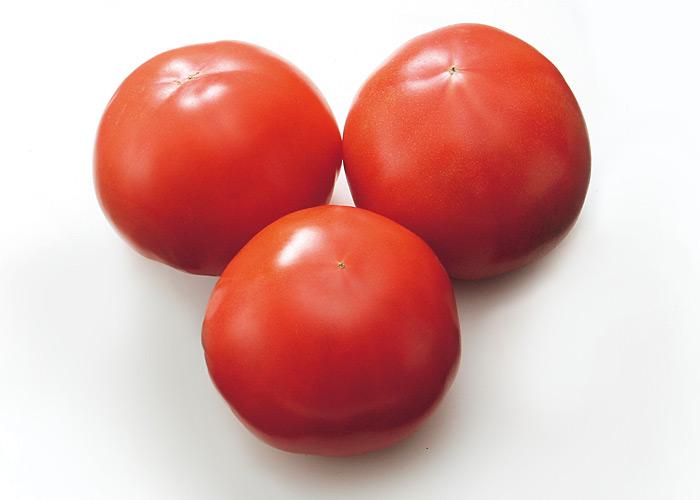 トマト | 公益社団法人ふくおか園芸農業振興協会