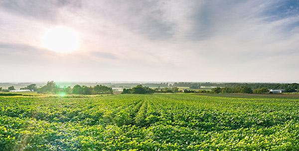 業務案内 | 公益社団法人ふくおか園芸農業振興協会